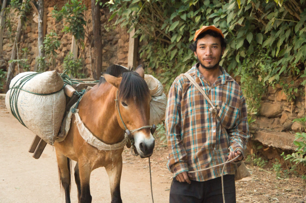 Man Returning to Village with Coffee on Horseback
