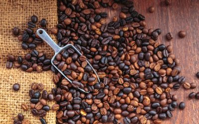 A Guide to Drip Coffee at Home
